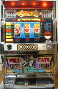 wildcats1